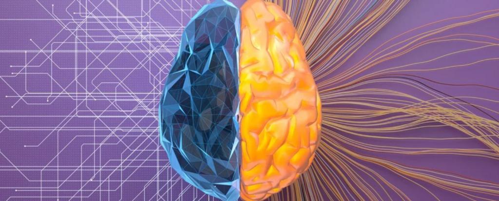 neironu tīkli